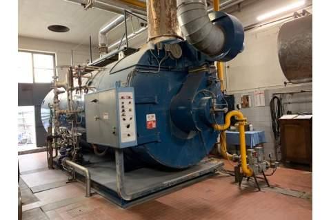 Caldaia produzione vapore Bono 12 ton