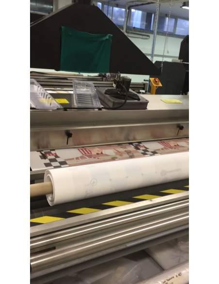Digital printing machine DUPONT ICHINOSE